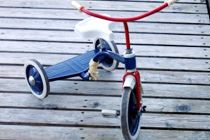 Where to Buy Children's Bicycles and Scooters for Kids: List of Stores